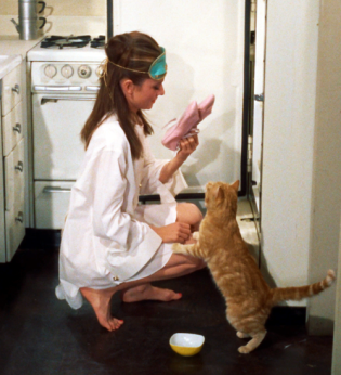 audrey_hepburn_and_cat_in_breakfast_at_tfianny's_1961