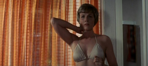 julie_andrews_the_tamarind_seed