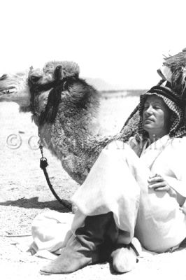 lawrence_of_arabia_peter_o'toole_between_takes_with_a_camel