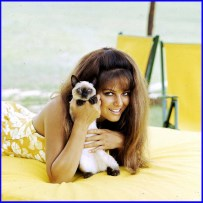 claudia_cardinale_and_her_pussy