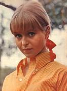 liza_goddard_skippy_the_bush_kangroo_orange_shirt