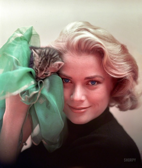 grace_kelly_with_her_pussy_1954_robert_vose_on_set_of_to_catch_a_thief_for_look_magazine