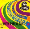 a_whiter_shade_of-pale_procol_harum_1967