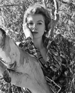 deborah_kerr_leaning_on_a_branch