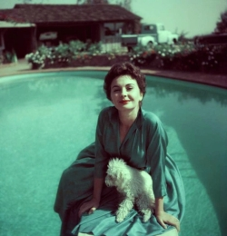 jean_simmons_and_her_dog_1954_2